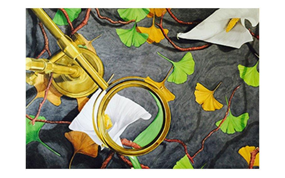 Denise Lisiecki, Is Art In the Eye of the Beholder? 2015