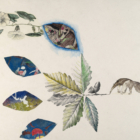 Ginny Ruffner, Scandent vinea clayaria (Morning glory with Paul Klee leaf), 2017, watercolor, pencil, and image transfer on paper. 23 ½ x 17 in. Collection of the artist. Photo by Gene Young.
